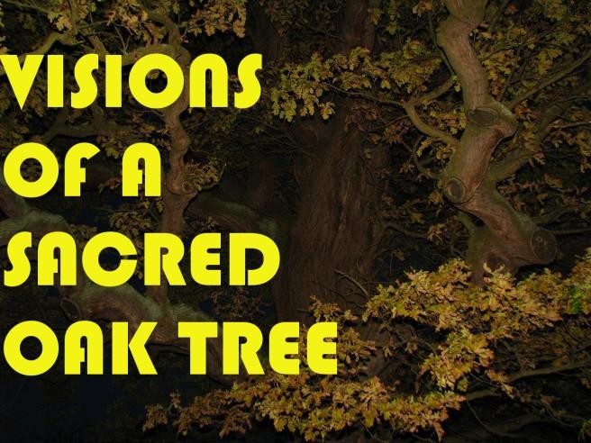 oak blog